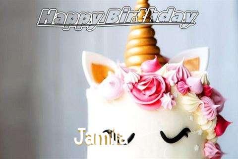 Happy Birthday Jamila Cake Image