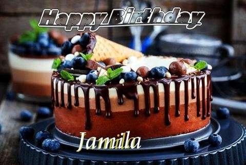 Happy Birthday Cake for Jamila