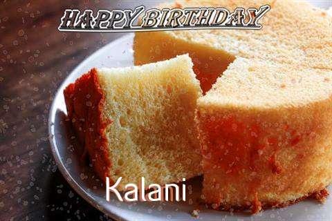 Kalani Birthday Celebration