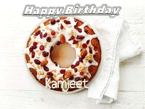 Happy Birthday Cake for Kamjeet