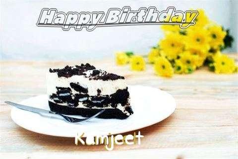 Kamjeet Cakes