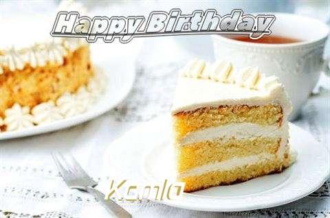 Kamla Cakes