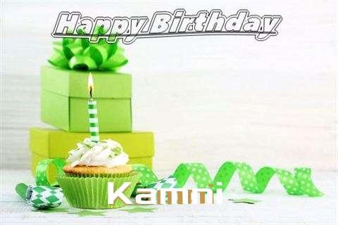 Kamni Birthday Celebration