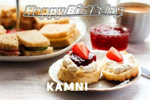 Happy Birthday Cake for Kamni