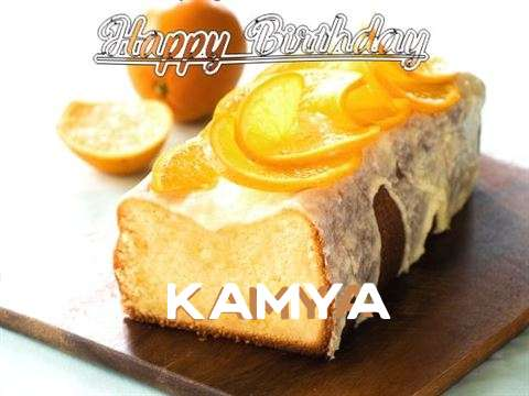 Kamya Cakes
