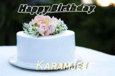 Karamjeet Birthday Celebration