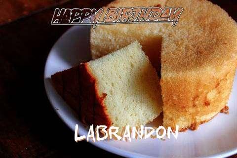 Happy Birthday to You Labrandon