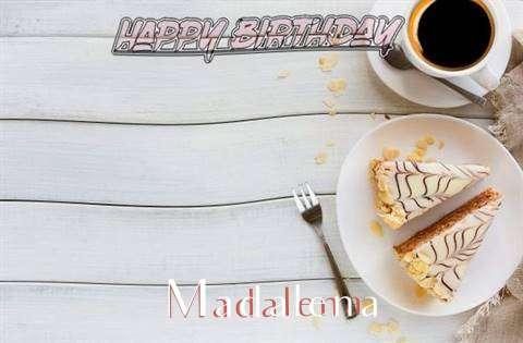 Madalena Cakes