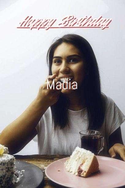 Madia Cakes