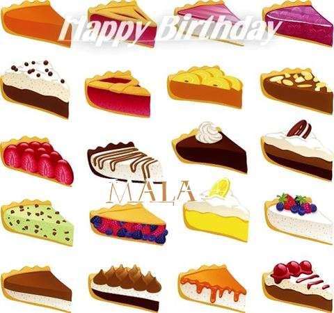 Mala Birthday Celebration
