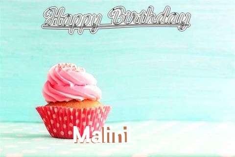 Malini Cakes