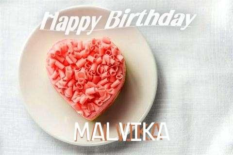 Malvika Cakes