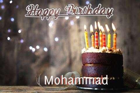 Mohammad Cakes