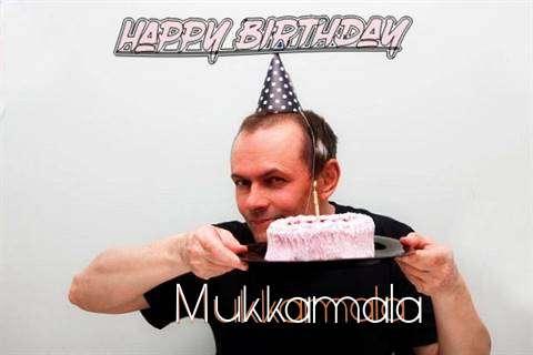 Mukkamala Cakes