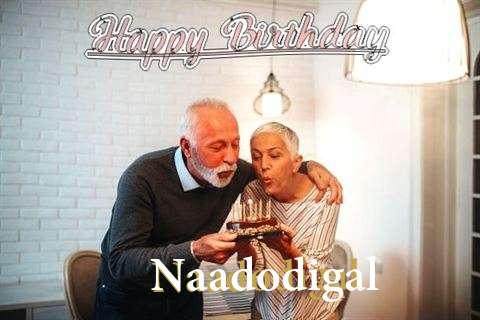 Naadodigal Birthday Celebration