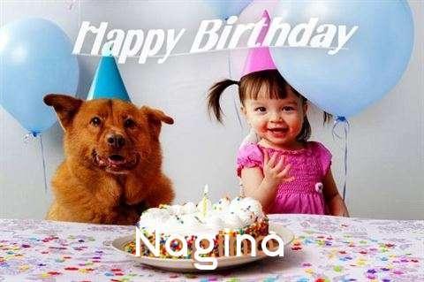 Nagina Cakes