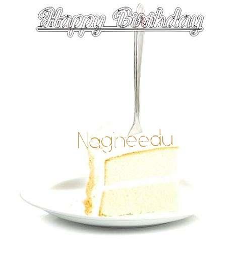 Happy Birthday Wishes for Nagineedu