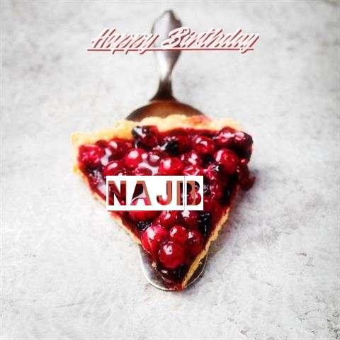 Happy Birthday to You Najib