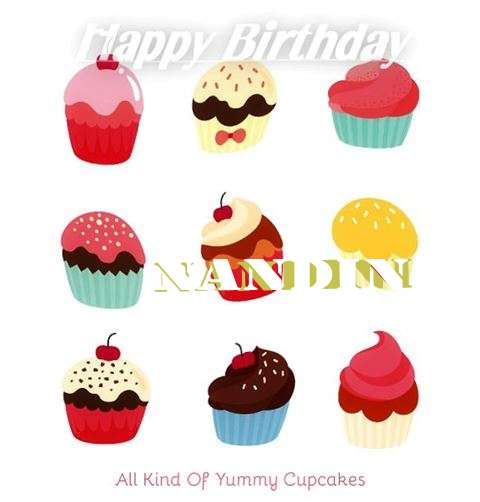 Nandini Cakes