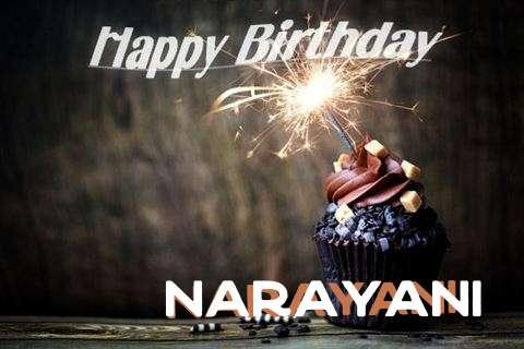 Narayani Cakes