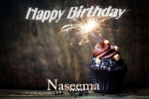 Naseema Cakes