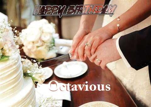 Octavious Cakes