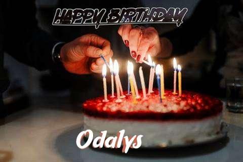Odalys Cakes
