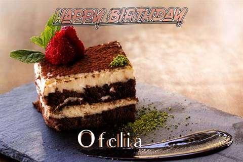 Ofelia Cakes