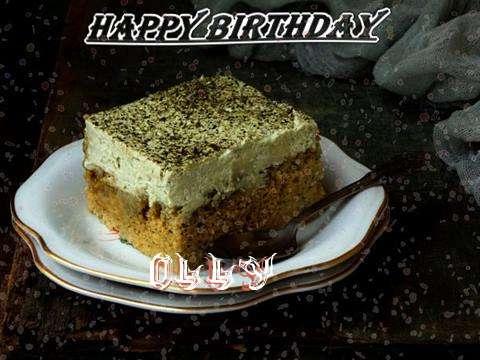 Olly Birthday Celebration