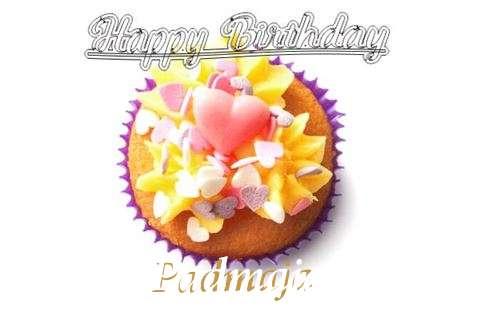 Happy Birthday Padmaja Cake Image