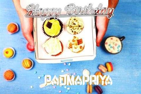 Padmapriya Cakes