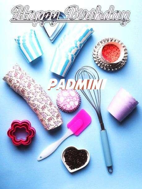 Wish Padmini