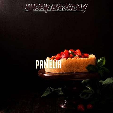 Pamelia Birthday Celebration
