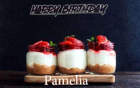 Wish Pamelia