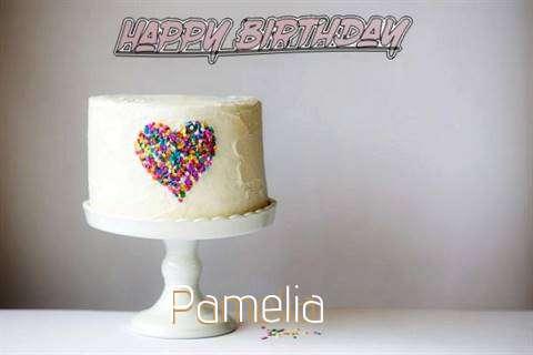 Pamelia Cakes