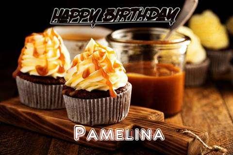 Pamelina Birthday Celebration
