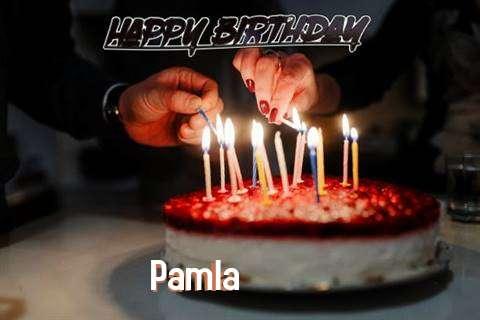 Pamla Cakes