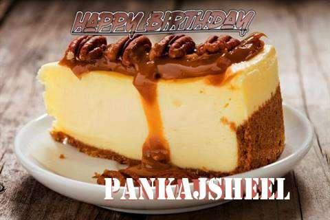 Pankajsheel Birthday Celebration