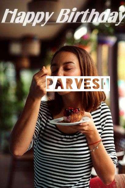 Parvesh Cakes