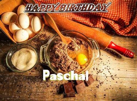 Wish Paschal