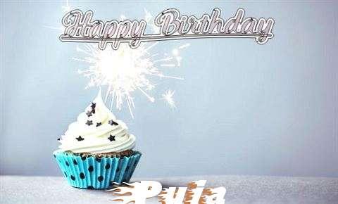 Happy Birthday to You Puja