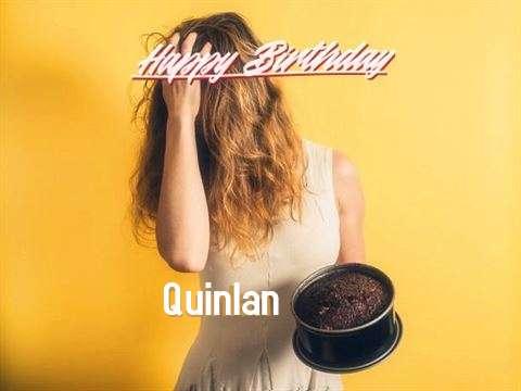 Happy Birthday Quinlan Cake Image
