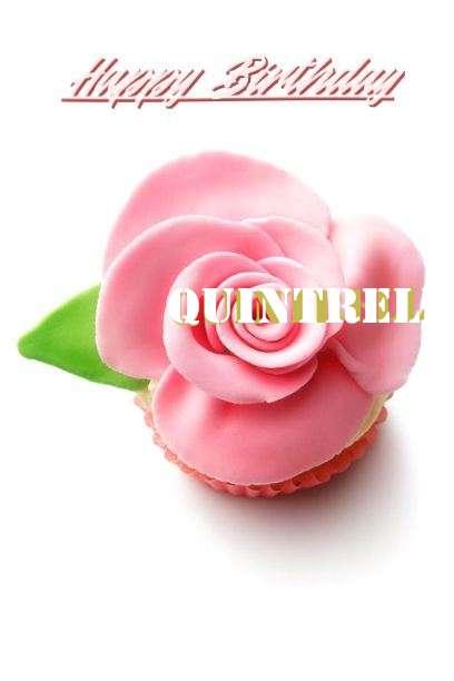 Quintrell Cakes