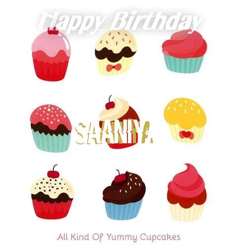 Saaniya Cakes