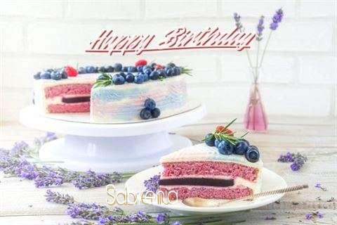 Happy Birthday to You Sabrenia