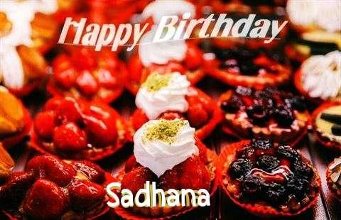 Happy Birthday Cake for Sadhana