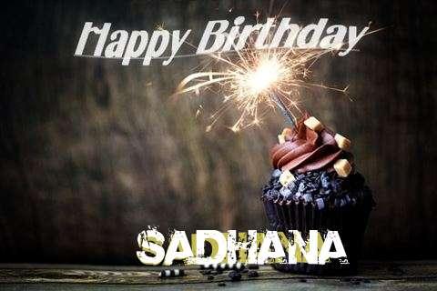 Sadhana Cakes