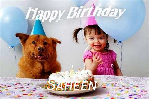 Saheen Cakes