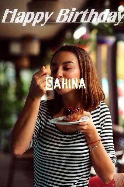 Sahina Cakes