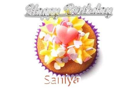 Happy Birthday Saniya Cake Image